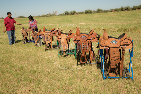 91 Buni Saddles Won 1YAK4250